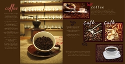 cafe_brochure_8_india