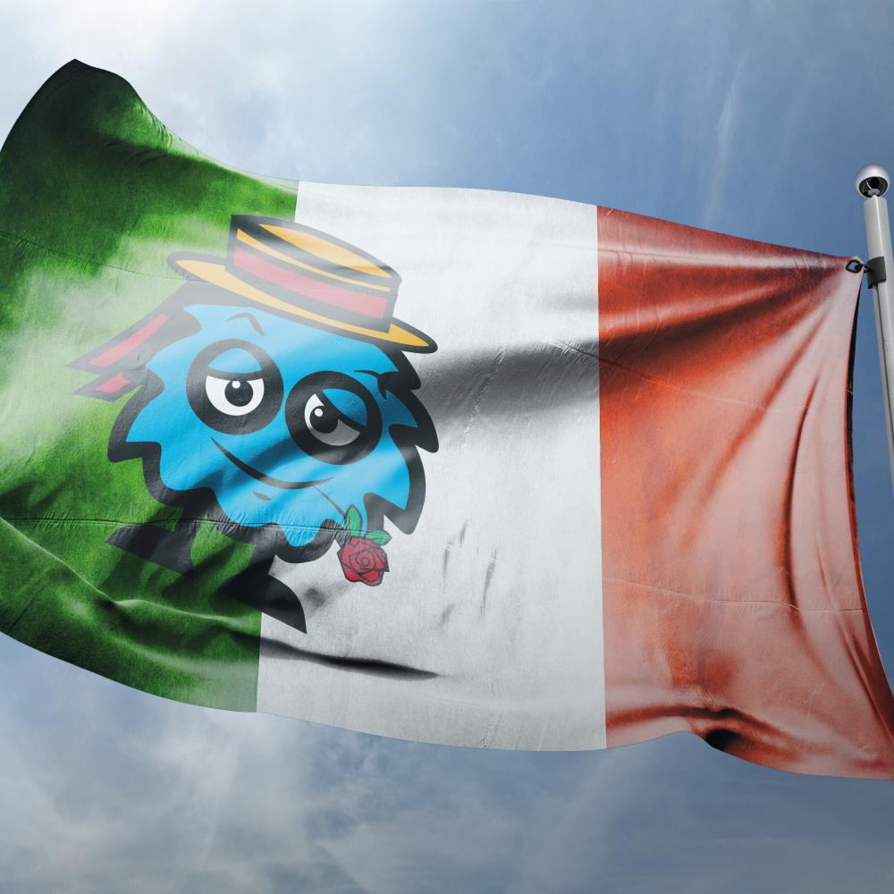 Landen vlaggen Italië
